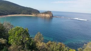 This glorious view from the Maitland Bay trail is describes in Copacabana Information. it is a major Copacabana and Central Coast Attraction.