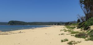 Umina Beach looking West