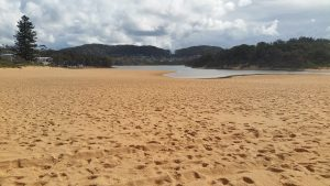 Wamberal Lagoon opens onto Wamberal Beach. it is a great area for children.