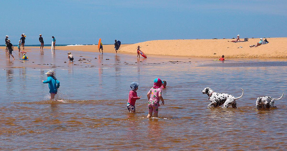 Children and Pets enjoying the adjacent Lagoon. Copa Beachside.